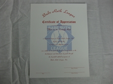 Picture of Appreciation Certificate