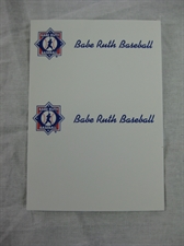 Picture of  Babe Ruth Baseball Business Cards