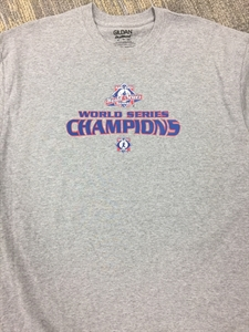 Picture of 2017 World Series Champions T-Shirt