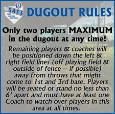 Picture of Dugout Rules